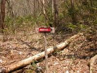 大ノ姿山登山道に設置された指導標
