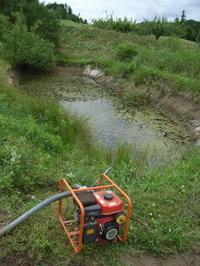 桃に潅水を実施・・・溜池からポンプで水をくみ上げる